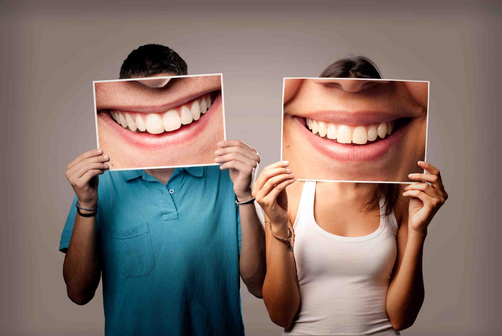 Quel est l'organe de la bouche ?